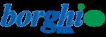 Borghi S.p.A. Logo